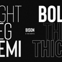 Bison New - A beautiful Font