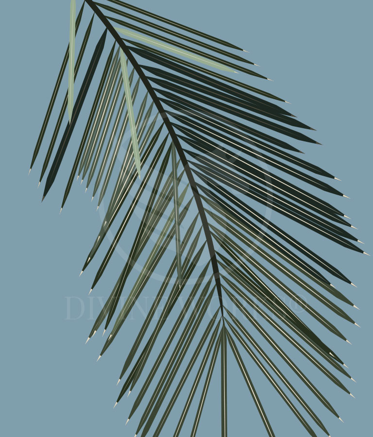 Free Palm Leaf 2 Adobe Illustrator Vector Illustration by Divine Works