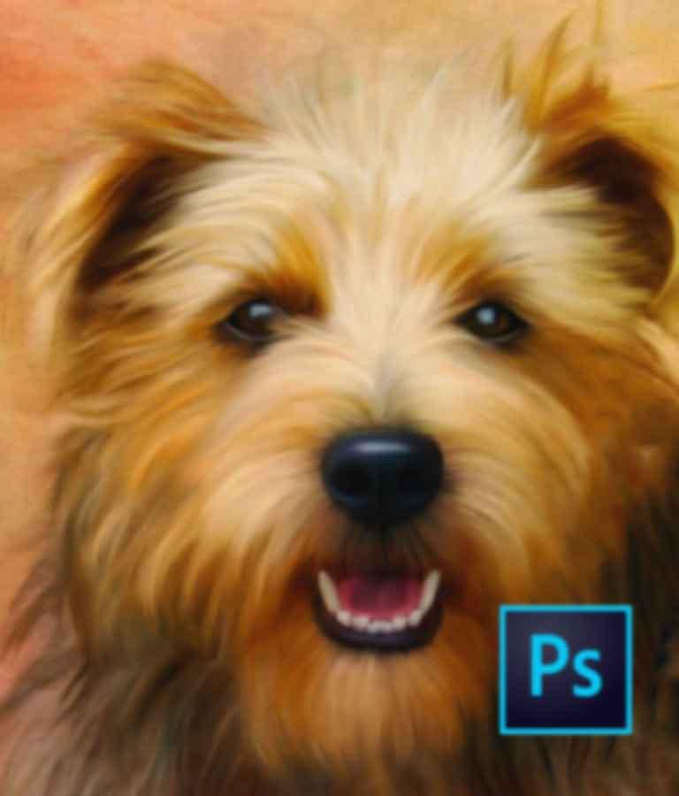 Digital Pet Paintings Using Photoshop