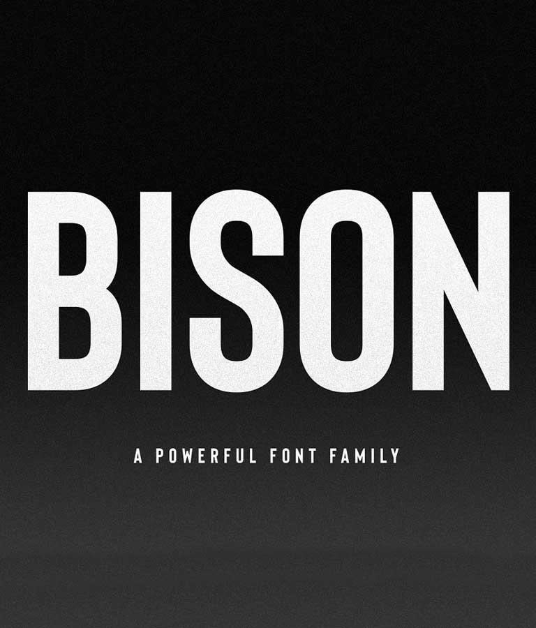 Bison A Powerful Sans Serif