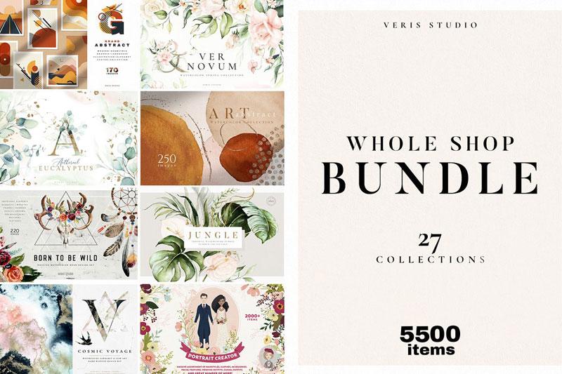 BUNDLE Whole Shop Watercolor Graphic