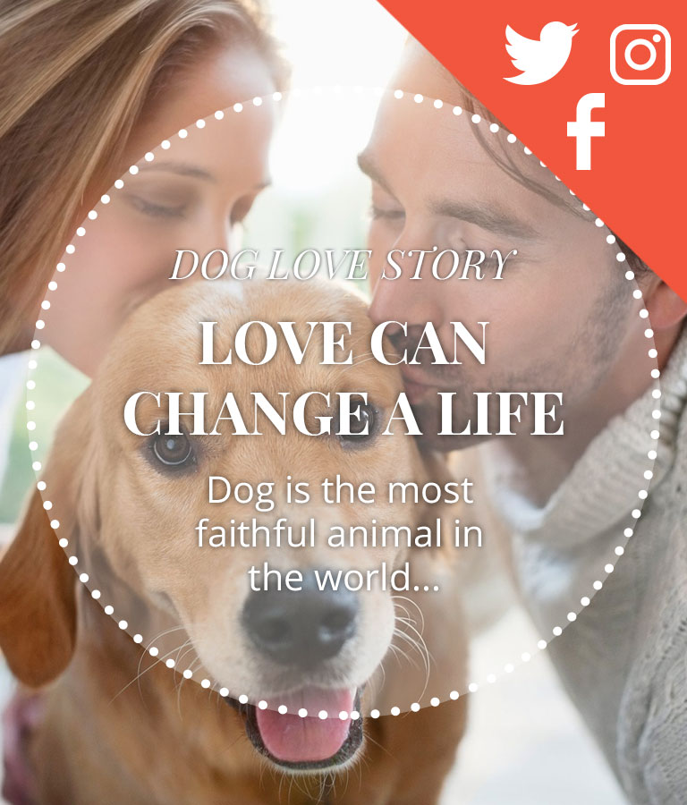 Download Free Dog Lovers Social Media Template by Divine Works