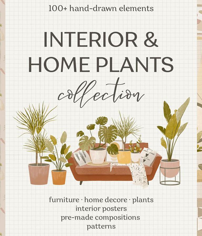 Interior & Home Plants