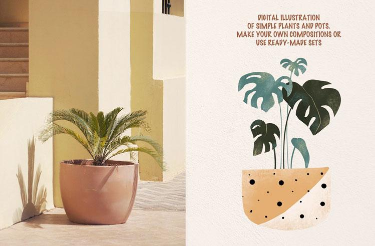 SIMPLE PLANTS - Modern clipart