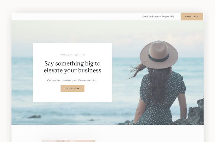 Sales Page   WordPress + Elementor