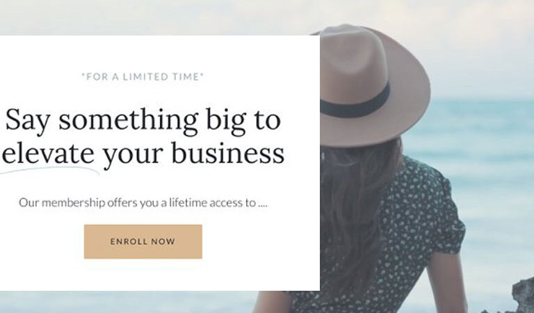 Sales Page | WordPress + Elementor